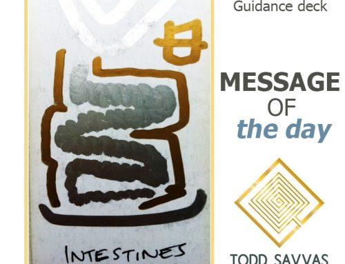 MOTD – Intestines 09/08/2015